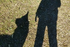 pet_friendly009